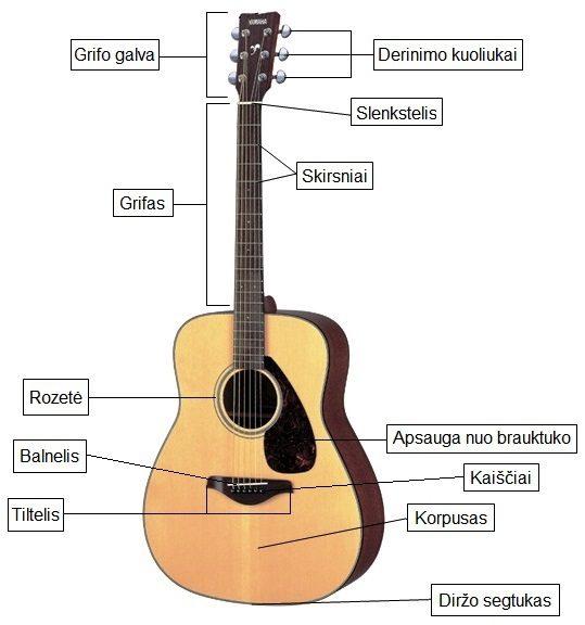 Akustinės gitaros dalys
