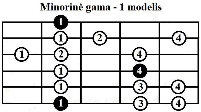 Minorine-gama-1-modelis