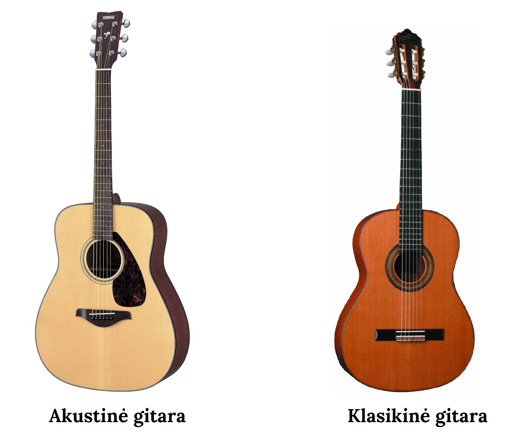 Akustine ir klasikine gitara